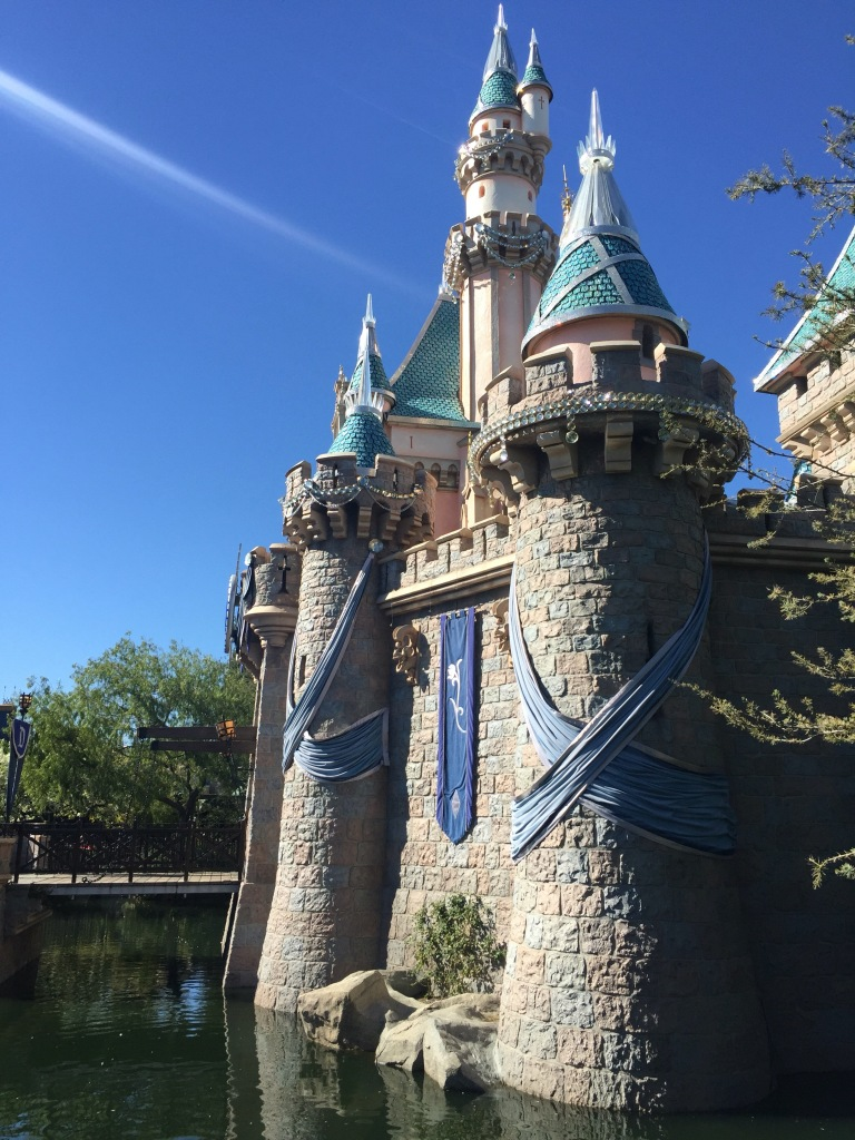 Disneyland 60 Vacation Review | The Rose Table