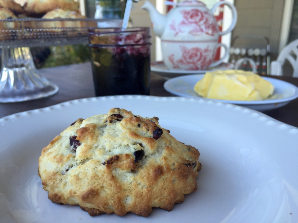 Cranberry Vanilla Buttermilk Scones | The Rose Table
