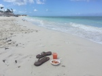 Caicos Dream Tours Review | The Rose Table