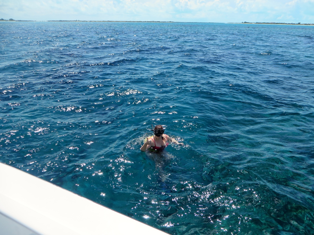 Snorkeling Provo's Great Barrier Reef | The Rose Table