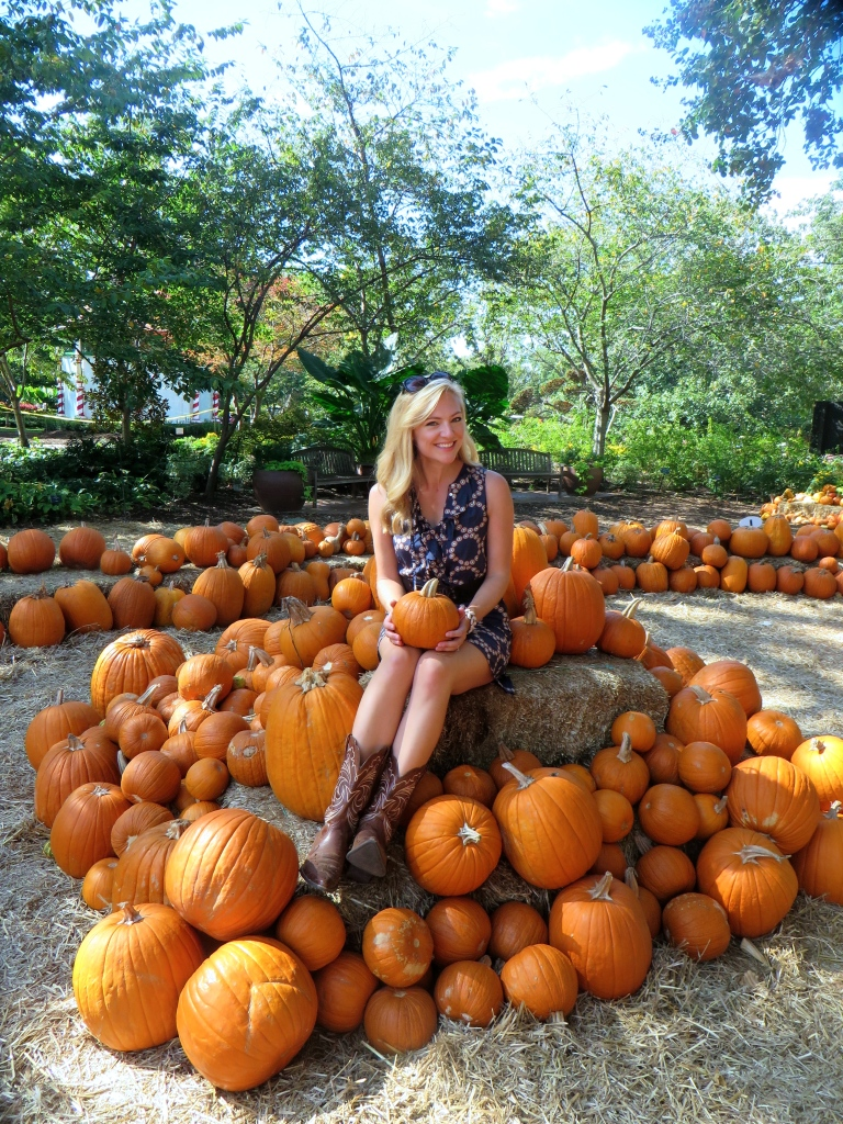 Autumn at the Arboretum, Pumpkin Village Dallas Arboretum