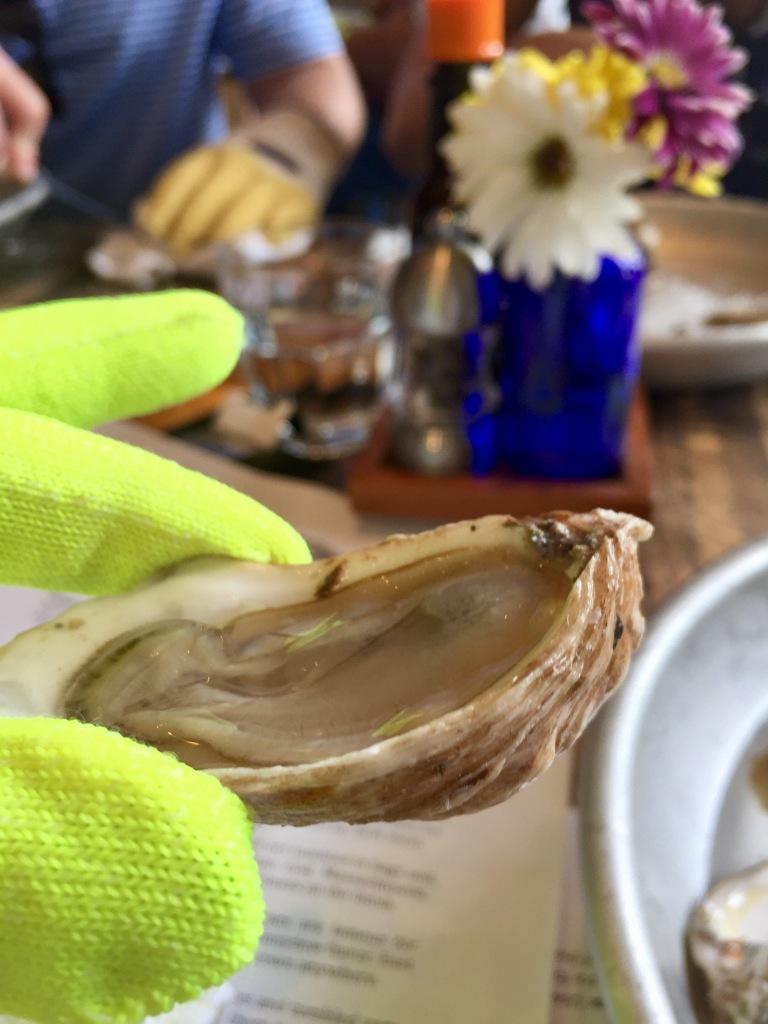 Savage Blonde Oyster
