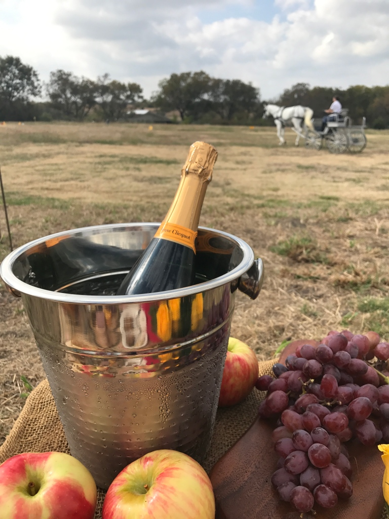 Horse Champagne Picnic | The Rose Table
